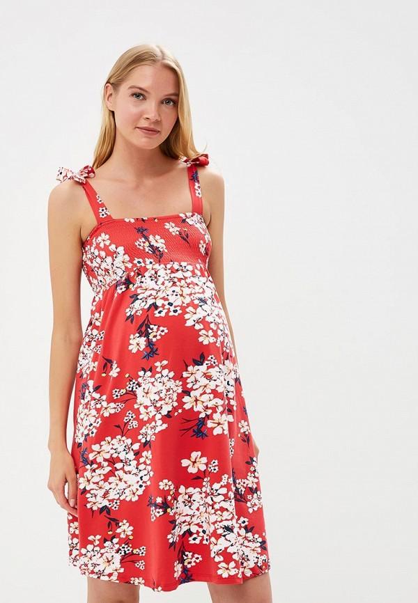 Фото Платье Dorothy Perkins Maternity. Купить с доставкой