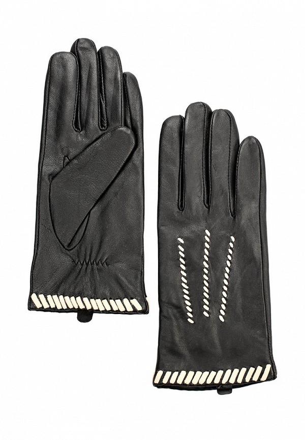 Женские перчатки Dorothy Perkins Curve 11193330
