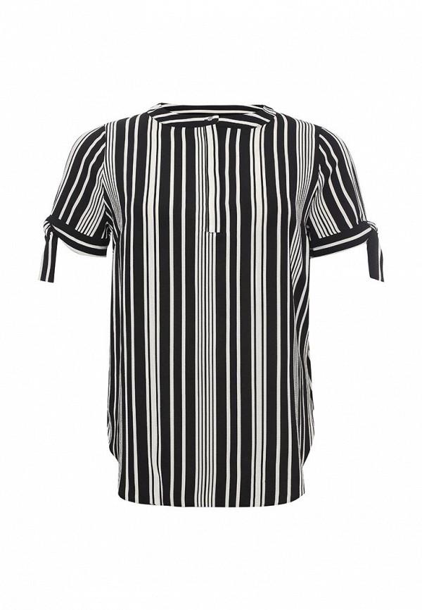 Блуза Dorothy Perkins Curve Dorothy Perkins Curve DO029EWRPF28 парка dorothy perkins dorothy perkins do005ewvad35