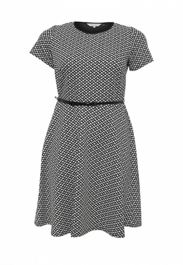Платье Dorothy Perkins Curve Dorothy Perkins Curve DO029EWRRQ79 топ dorothy perkins curve dorothy perkins curve do029ewjew65