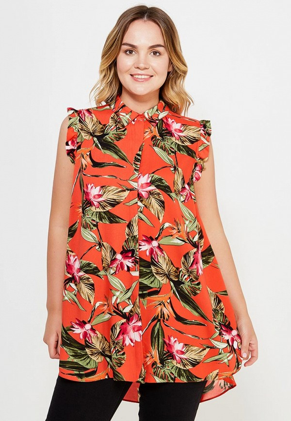 Блуза Dorothy Perkins Curve Dorothy Perkins Curve DO029EWTQQ38