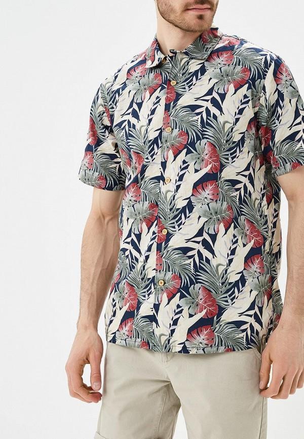 Фото Рубашка Dockers. Купить с доставкой