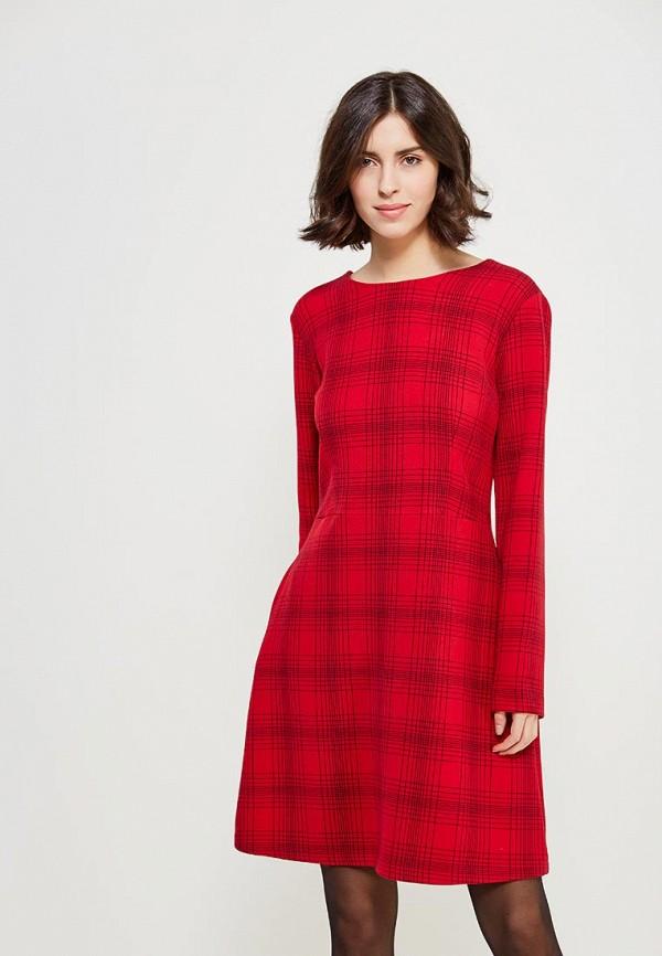где купить Платье Echo Echo EC006EWZGL71 по лучшей цене