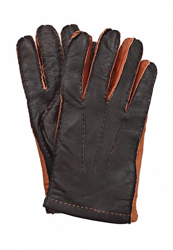 Мужские перчатки Eleganzza HS789 brown/cognac