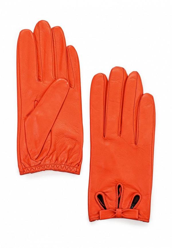 Женские перчатки Eleganzza F-IS0715 chilli