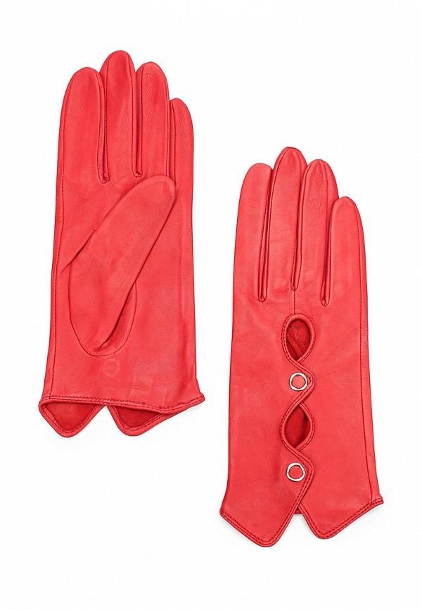 Перчатки Eleganzza Eleganzza EL116DWXHY51 eleganzza сумка eleganzza z 1410106 white red белый коралловый