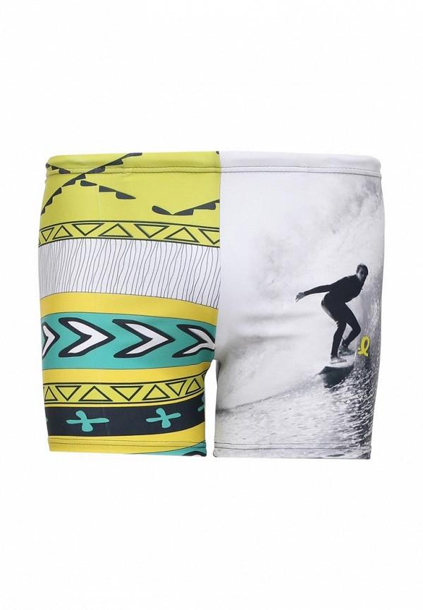 Мужские шорты для плавания EMDI 07-0816-150
