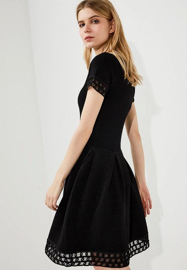 Платье Emporio Armani Emporio Armani EM598EWZWF43