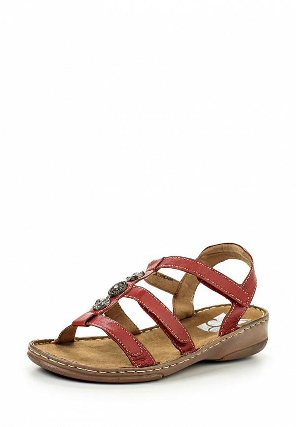 Женские сандалии Evans 20C01TRED