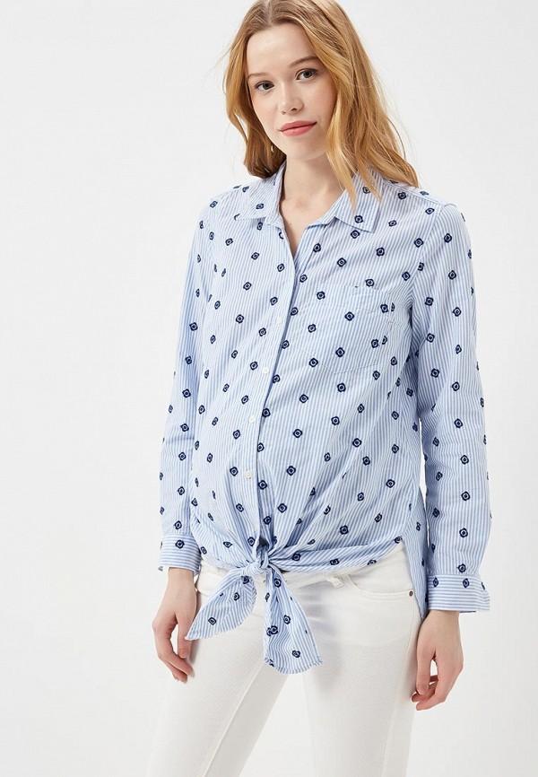 Фото Блуза Gap Maternity. Купить с доставкой