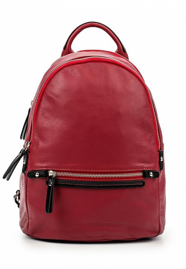 Городской рюкзак Gianni Conti 583695 red