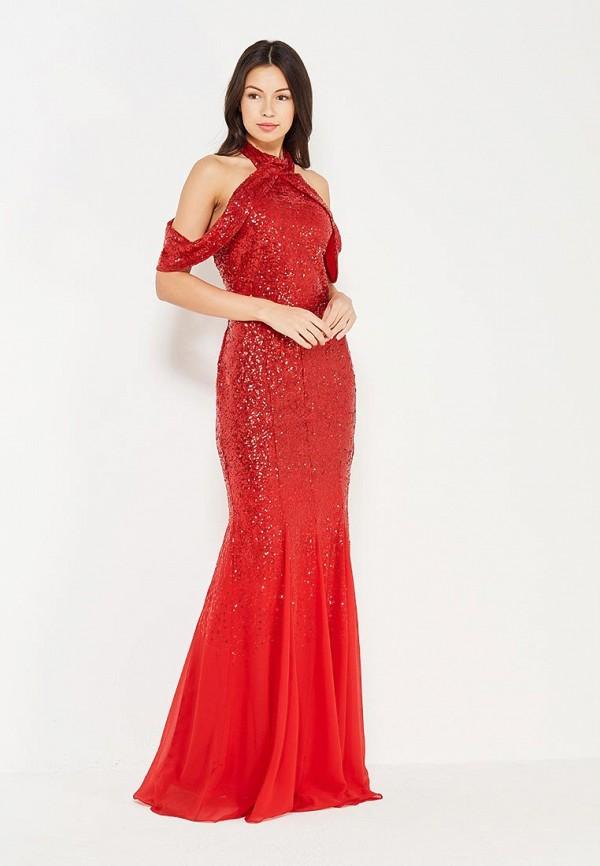 Платье Goddiva Goddiva GO014EWXQQ09 платье goddiva size plus goddiva size plus go015ewmpl70