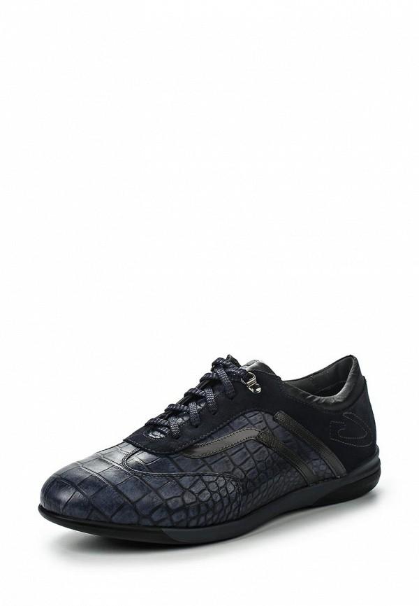 Мужские кроссовки Guardiani Sport SU73381C