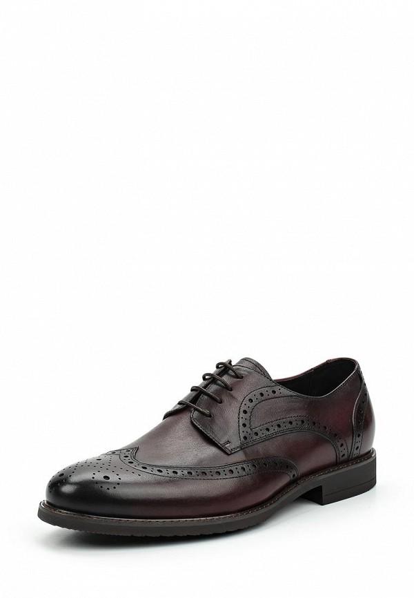 где купить Туфли Guido Grozzi Guido Grozzi GU014AMVSW93 по лучшей цене