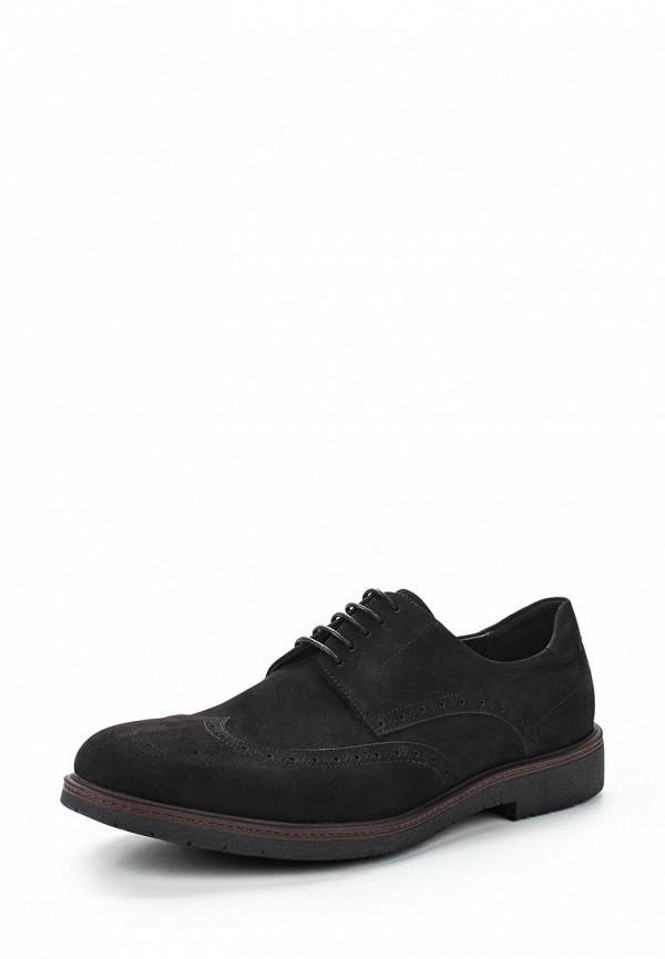 где купить Туфли Guido Grozzi Guido Grozzi GU014AMVSX22 по лучшей цене