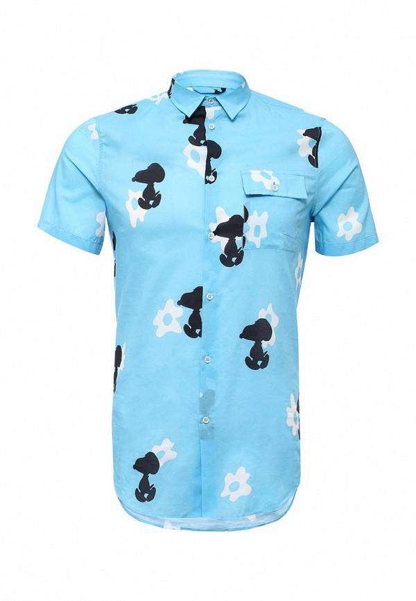 Рубашка Iceberg G0260316