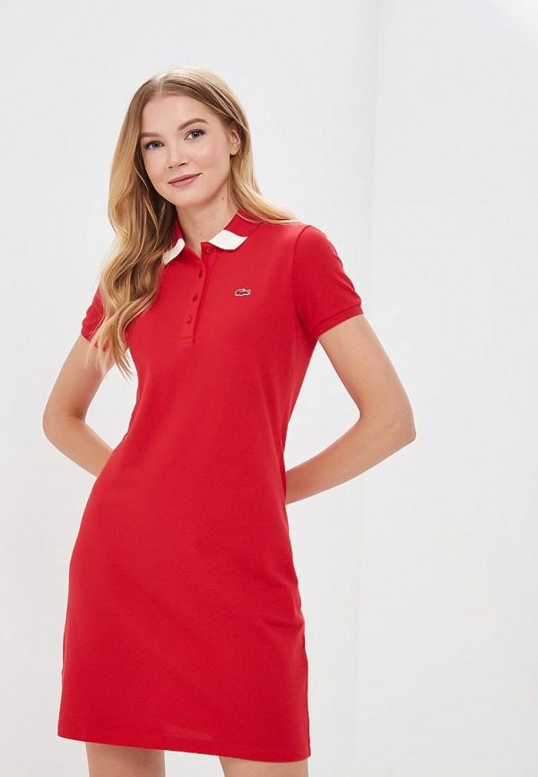Платье Lacoste Lacoste LA038EWAJRH5 платье lacoste ef081515pt