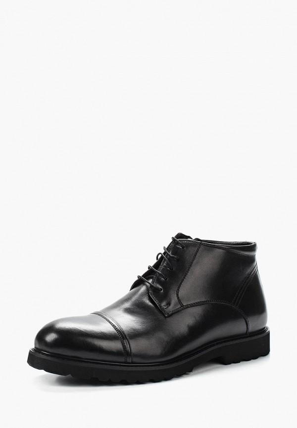 Фото Ботинки классические Marco Lippi. Купить с доставкой