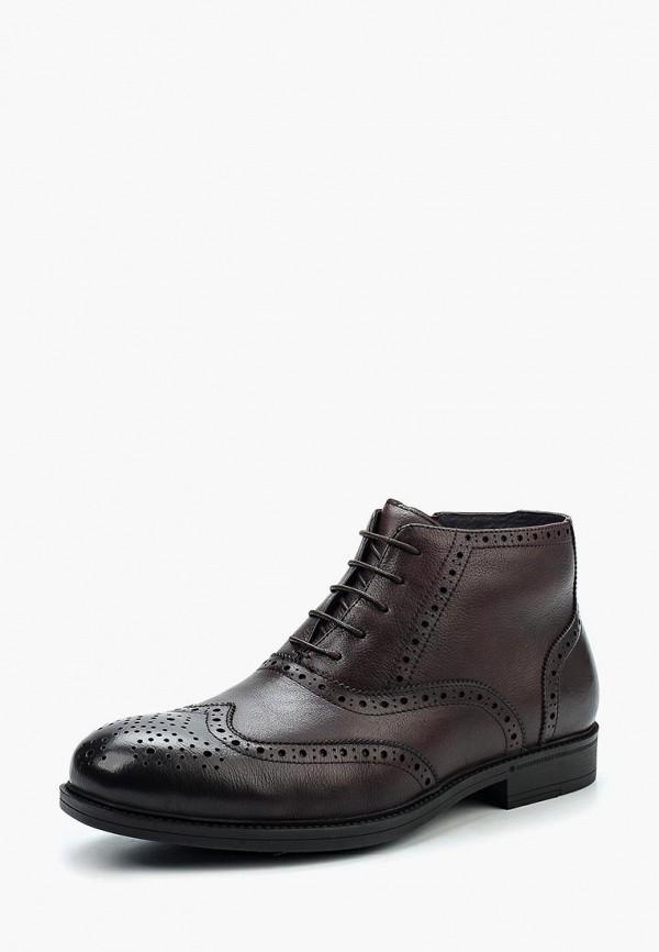 Фото - мужские ботинки и полуботинки Marco Lippi коричневого цвета