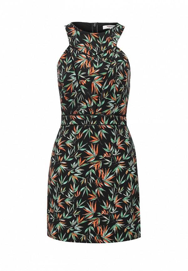 где купить Платье Morgan Morgan MO012EWSRQ29 по лучшей цене