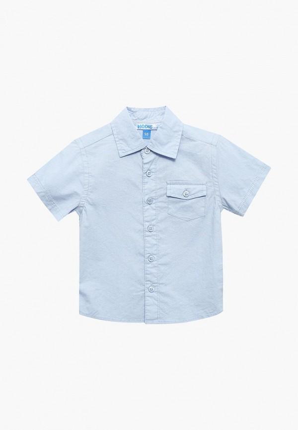 Купить Рубашка Modis, MO044EBBLMC8, голубой, Весна-лето 2018