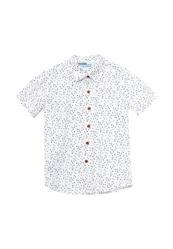 Рубашка Modis (Модис) M171K00600