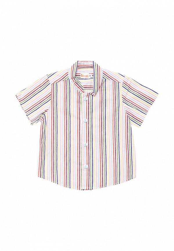 Рубашка Frizzzy Frizzzy MP002XB001UZ шорты frizzzy frizzzy mp002xb001uy