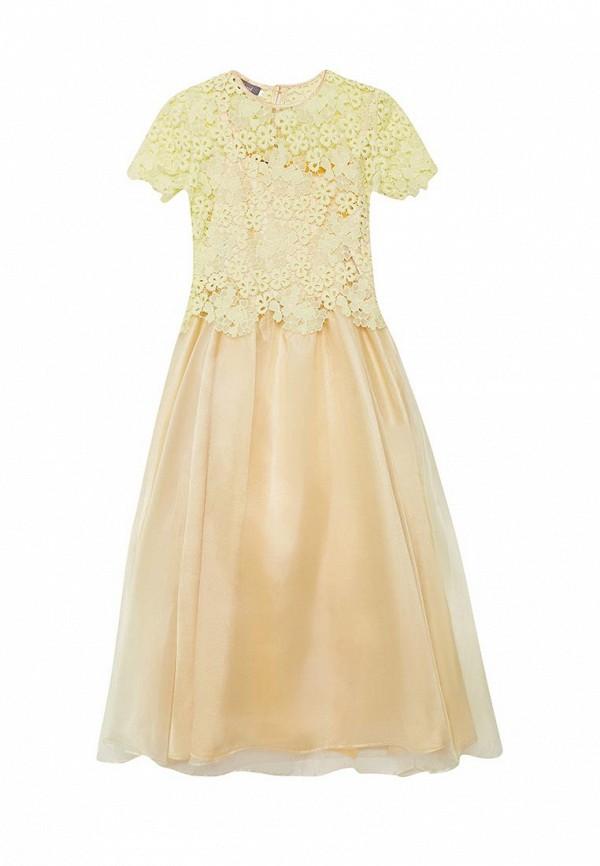 Платье Shened Shened MP002XG004G7 платье туника тара shened