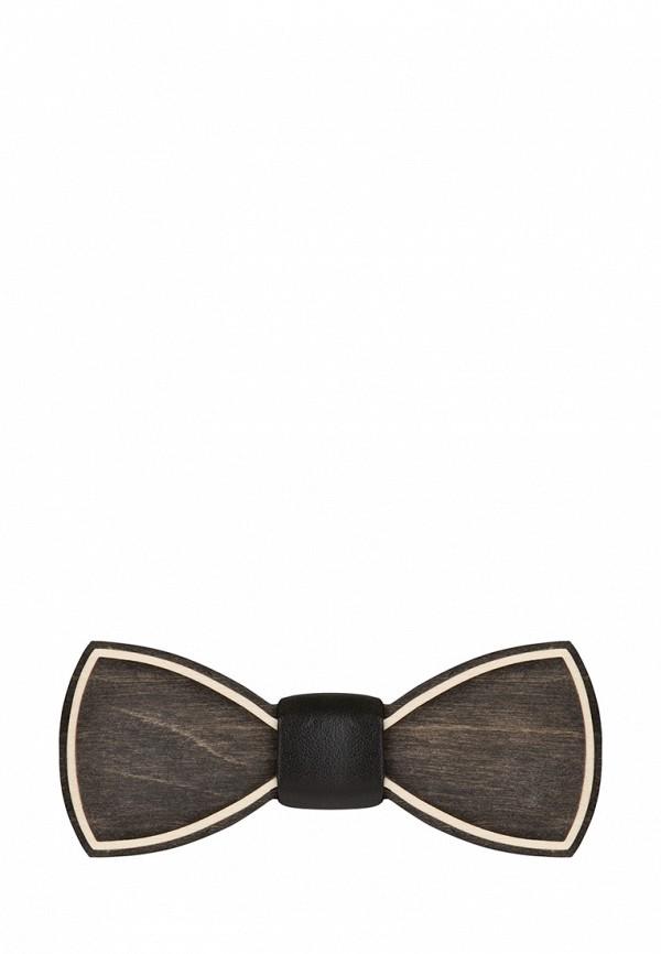 Фото Бабочка Blackbow. Купить с доставкой