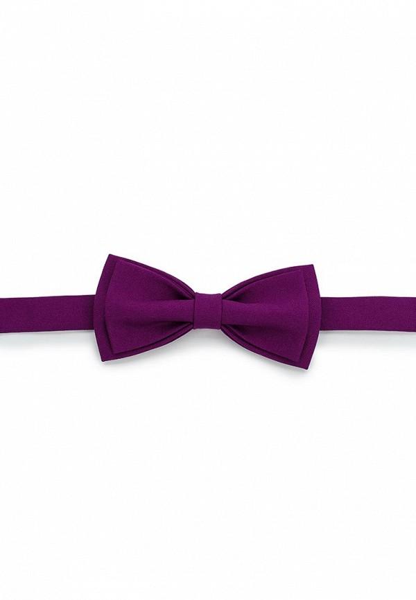 Бабочка  фиолетовый цвета