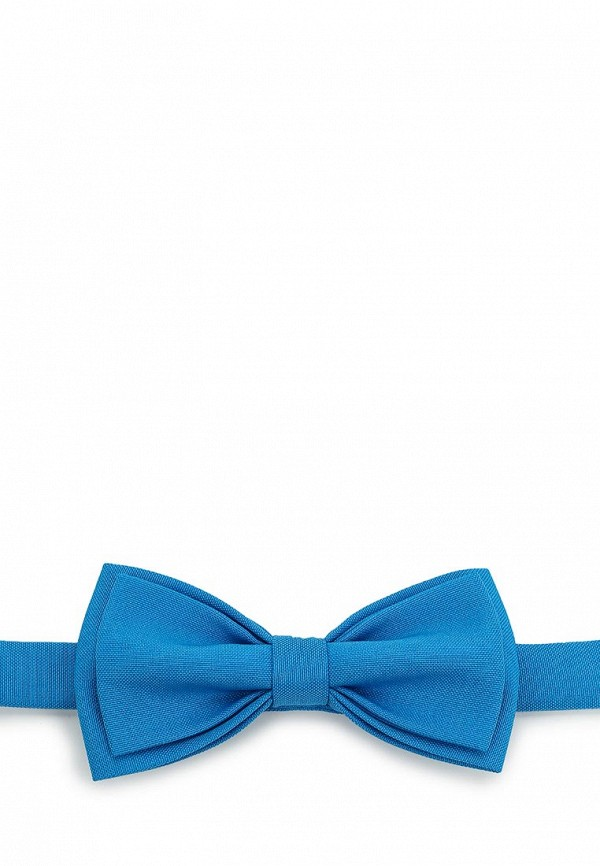 Бабочка  голубой цвета