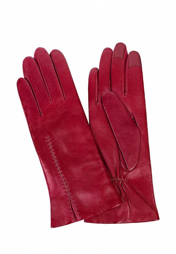 перчатки женские michel katana цвет фуксия k81 if1 размер 6 5 Перчатки Michel Katana Michel Katana MP002XW13LFE