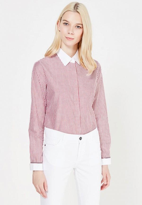 цена  Блуза Marimay Marimay MP002XW1AC0G  онлайн в 2017 году