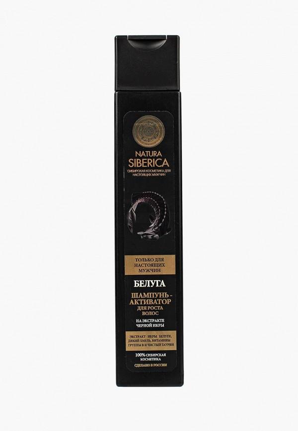 Шампунь Natura Siberica, Men для роста волос Белуга, 250 мл, NA026LMLQC69, Весна-лето 2018  - купить со скидкой
