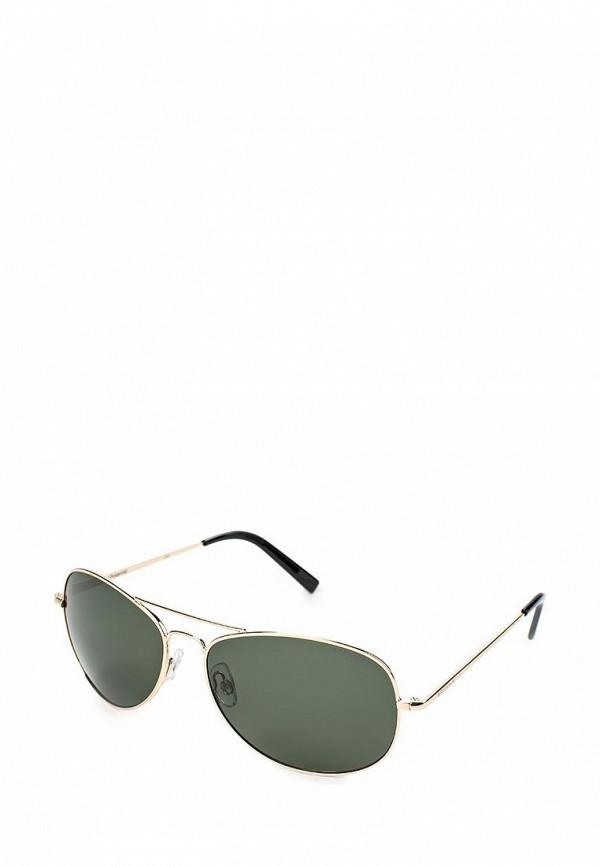 Мужские солнцезащитные очки Polaroid PLD 1011/S L