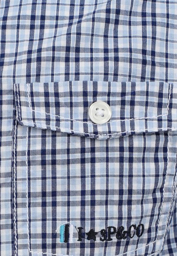 Рубашка 3 Pommes 3F12035: изображение 3