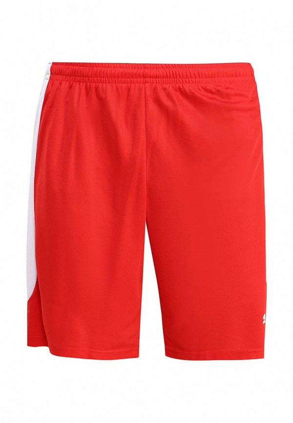 Мужские спортивные шорты Puma 65491601