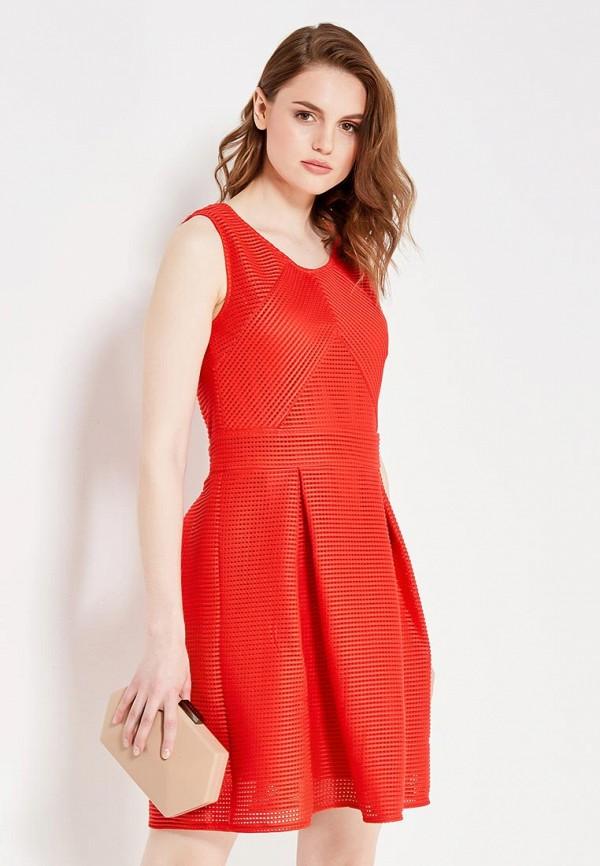 Платье QED London QED London QE001EWHZV82