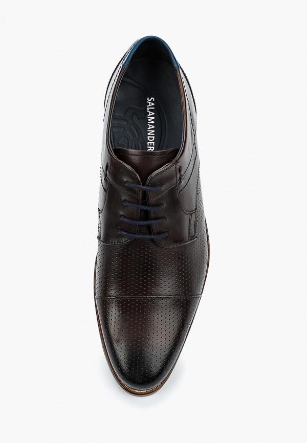 6981862e92641a Купить Женские туфли от бренда Salamander в каталоге интернет ...