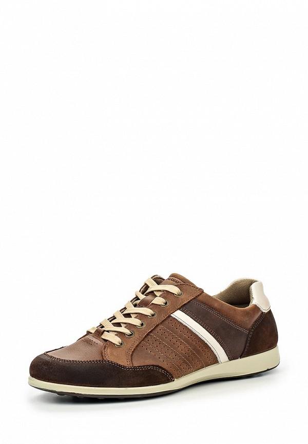 Мужские кроссовки SALAMANDER (Саламандер) 31-65003-04