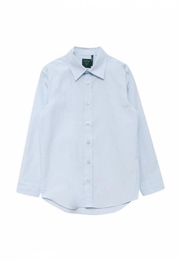 Рубашка Sela Sela SE001EBURW19 sela sela se001ebise97