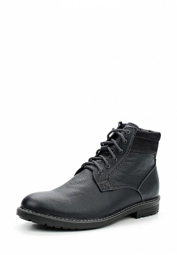 Ботинки классические Shoiberg Shoiberg SH003AMWKE74