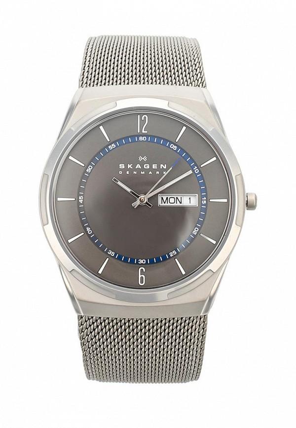 Часы Skagen Skagen SK006DMWCO43 цена и фото