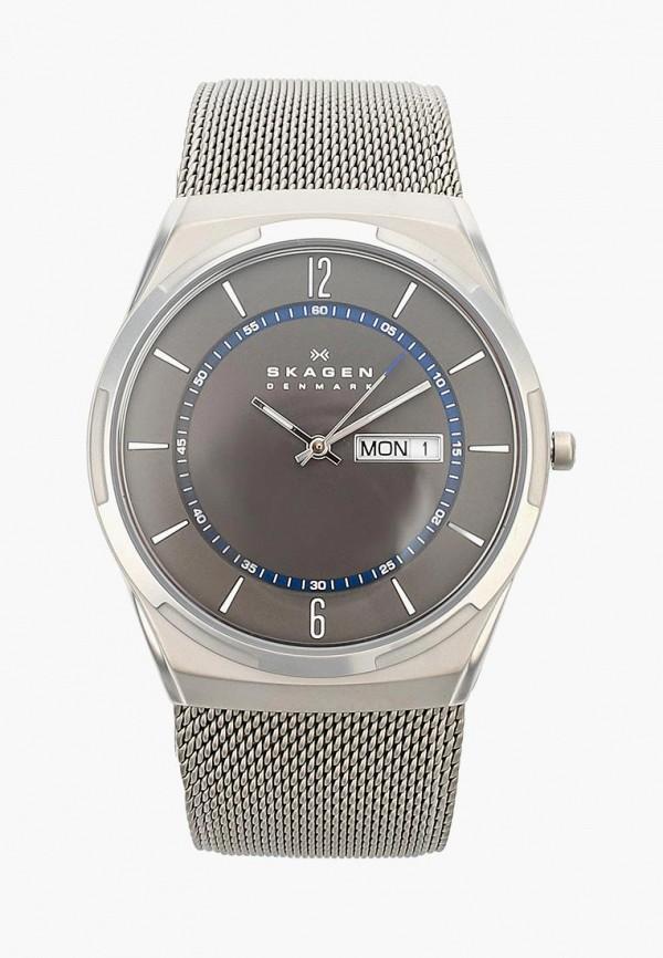 Часы Skagen Skagen SK006DMWCO43