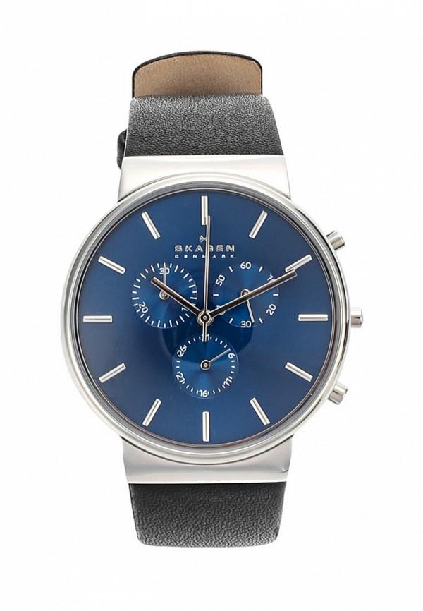 цена на Часы Skagen Skagen SK006DMWCO44