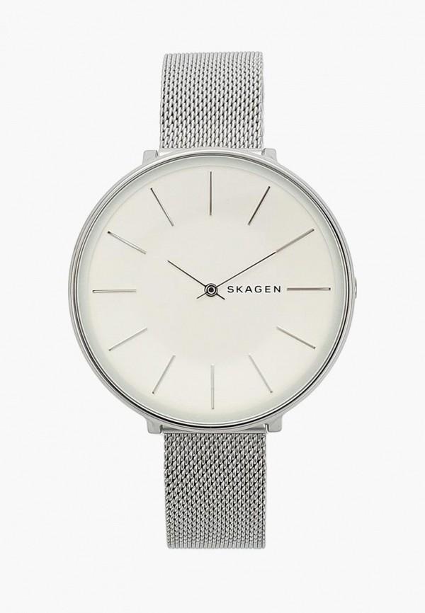 Часы Skagen Skagen SK006DWBFYO3