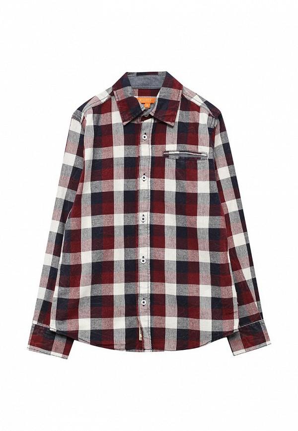 Рубашка Staccato Staccato ST029EBUYM41