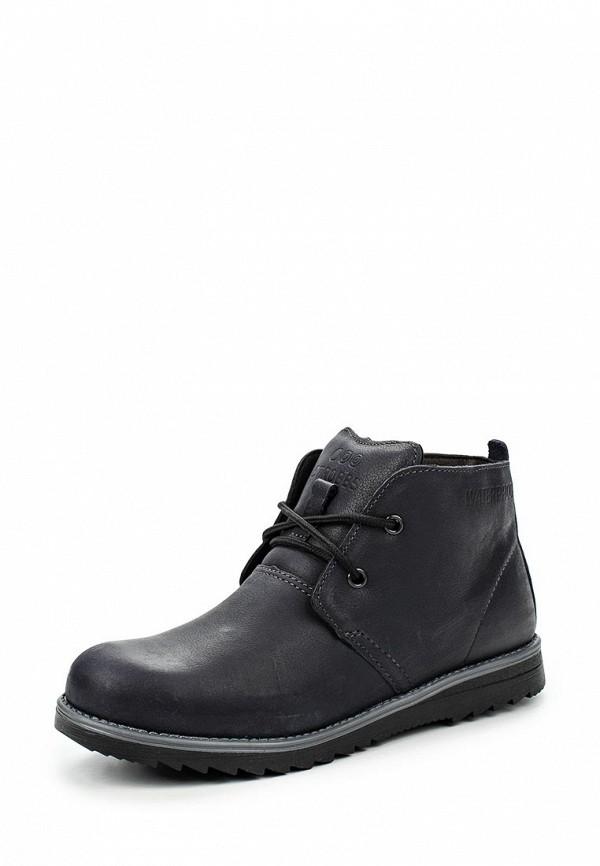 Ботинки для мальчиков Strobbs N801-1