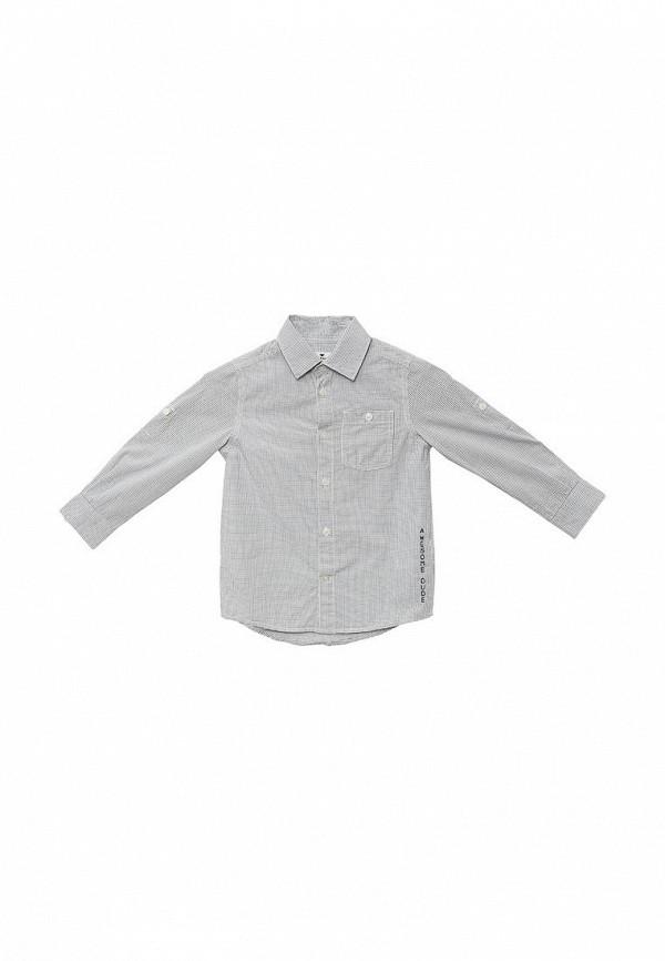 Рубашка Tom Tailor (Том Тейлор) 2031273.40.82