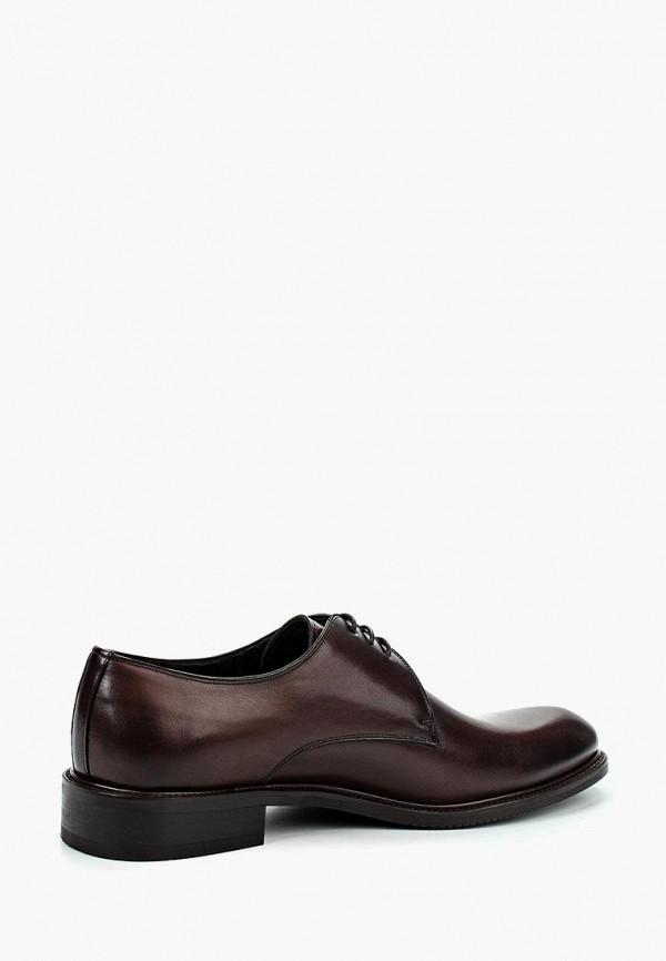 Фото 6 - мужские туфли Umber коричневого цвета